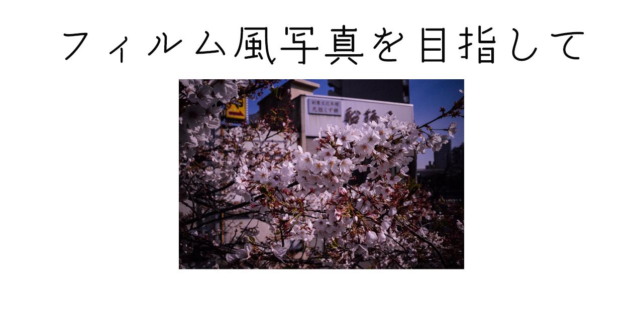 【1分で見れる】富士のカメラでフィルム風写真の現像を目指してみた
